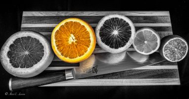 Citrus Fruit by Alvin Lavoie